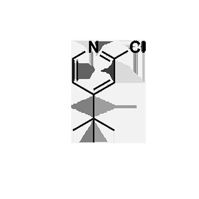 4-tert-butyl-2-chloropyridine